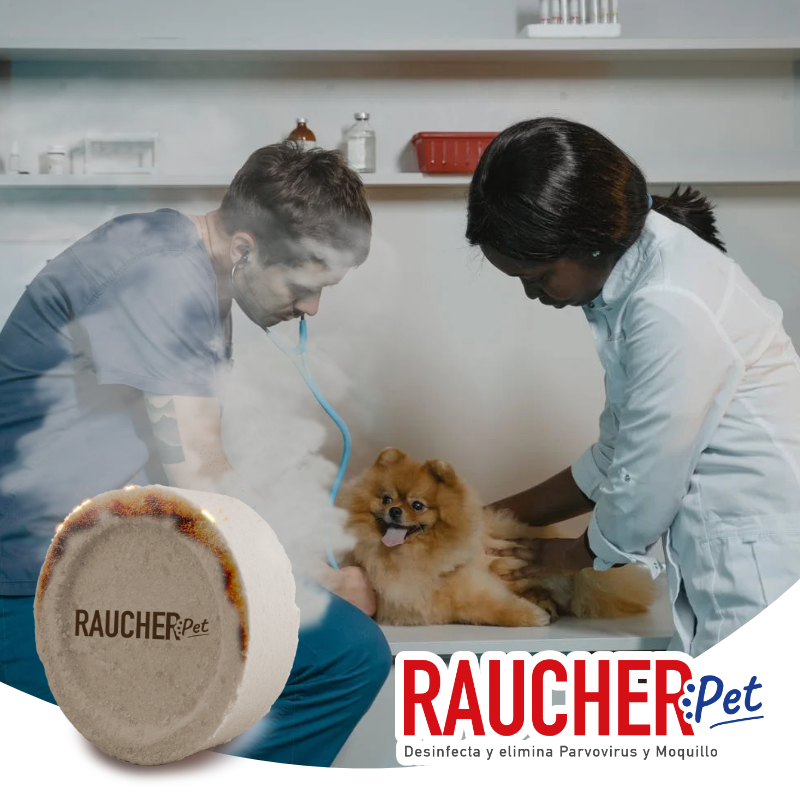RAUCHER PET EN HOSPITALES VETERINARIOS